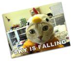 Skyfalling-angled